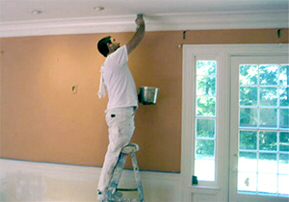 Exterior and Interior Painting